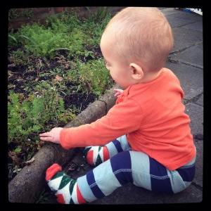My little gardening buddy